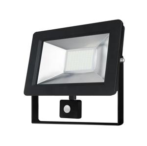Wojnarowscy LED Reflektor so senzorom NOCTIS 2 1xLED/10W/230V IP44 WJ0166