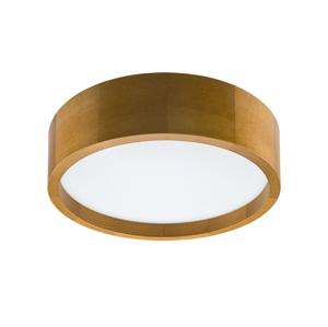 Lamkur LED Stropné svietidlo LED/12W/230V LA37264
